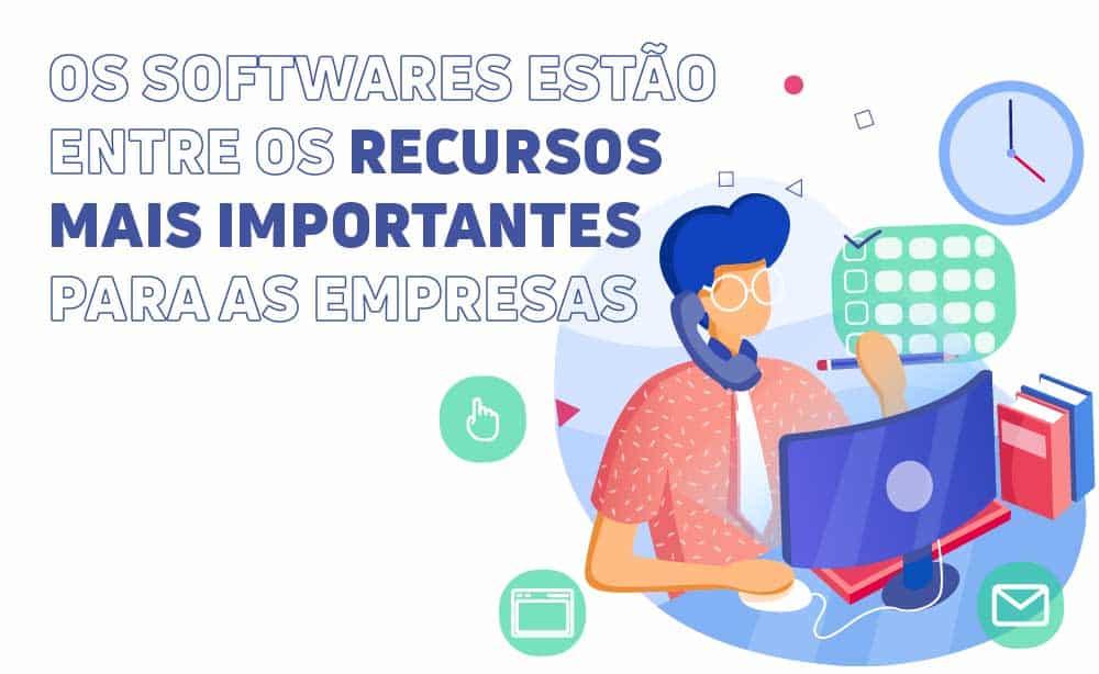 Ilustração de uma pessoa trabalhando no computador, com o texto: Os softwares estão entre os recursos mais importantes para as empresas